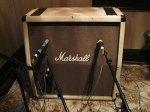 evanescence_marshall_amp